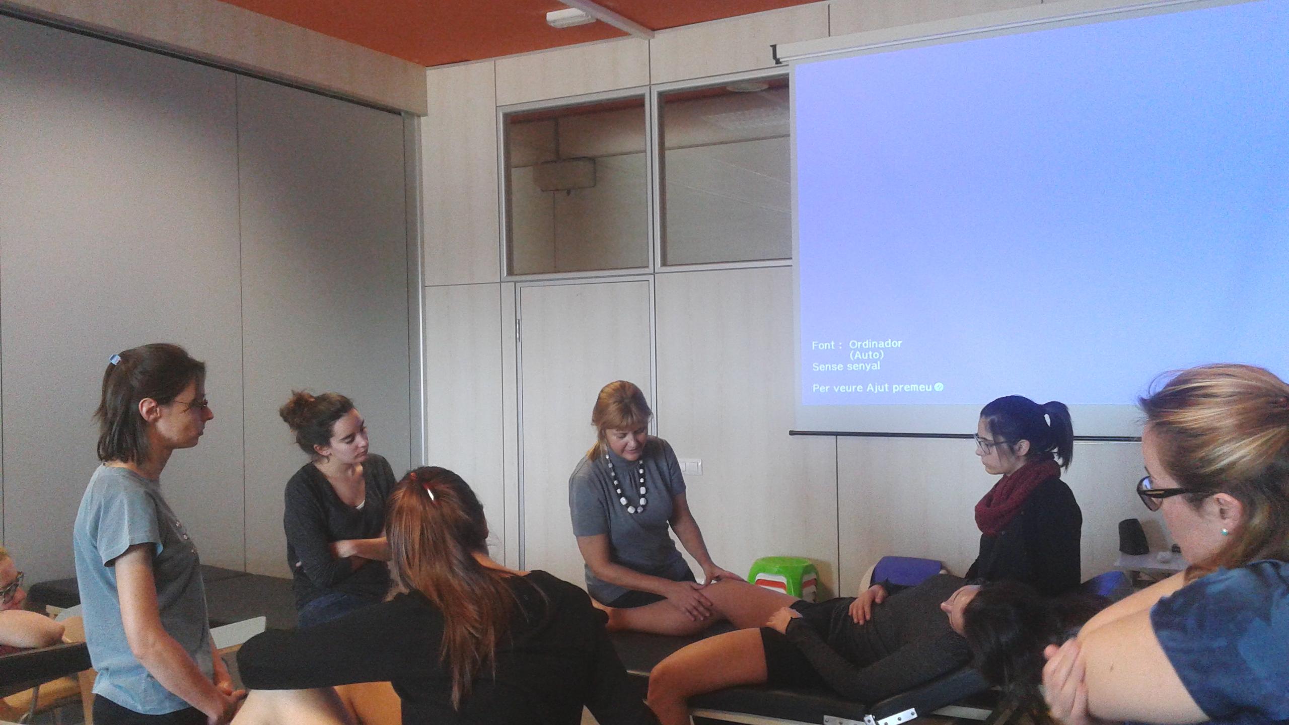 Finalitzada amb èxit la primera edició del curs de Drenatge Limfàtic per a Fisioterapeutes celebrada a EUSES