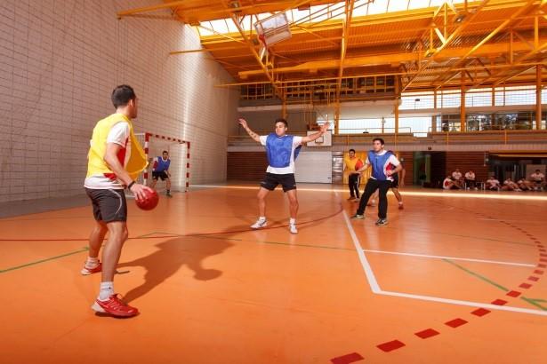 ¿Cuál es el perfil de los alumnos del Grado en Ciencias de la Actividad Física y el Deporte en EUSES Terres de l'Ebre? El 50% ejerce en el ámbito del deporte y el otro 50% continúa estudiando
