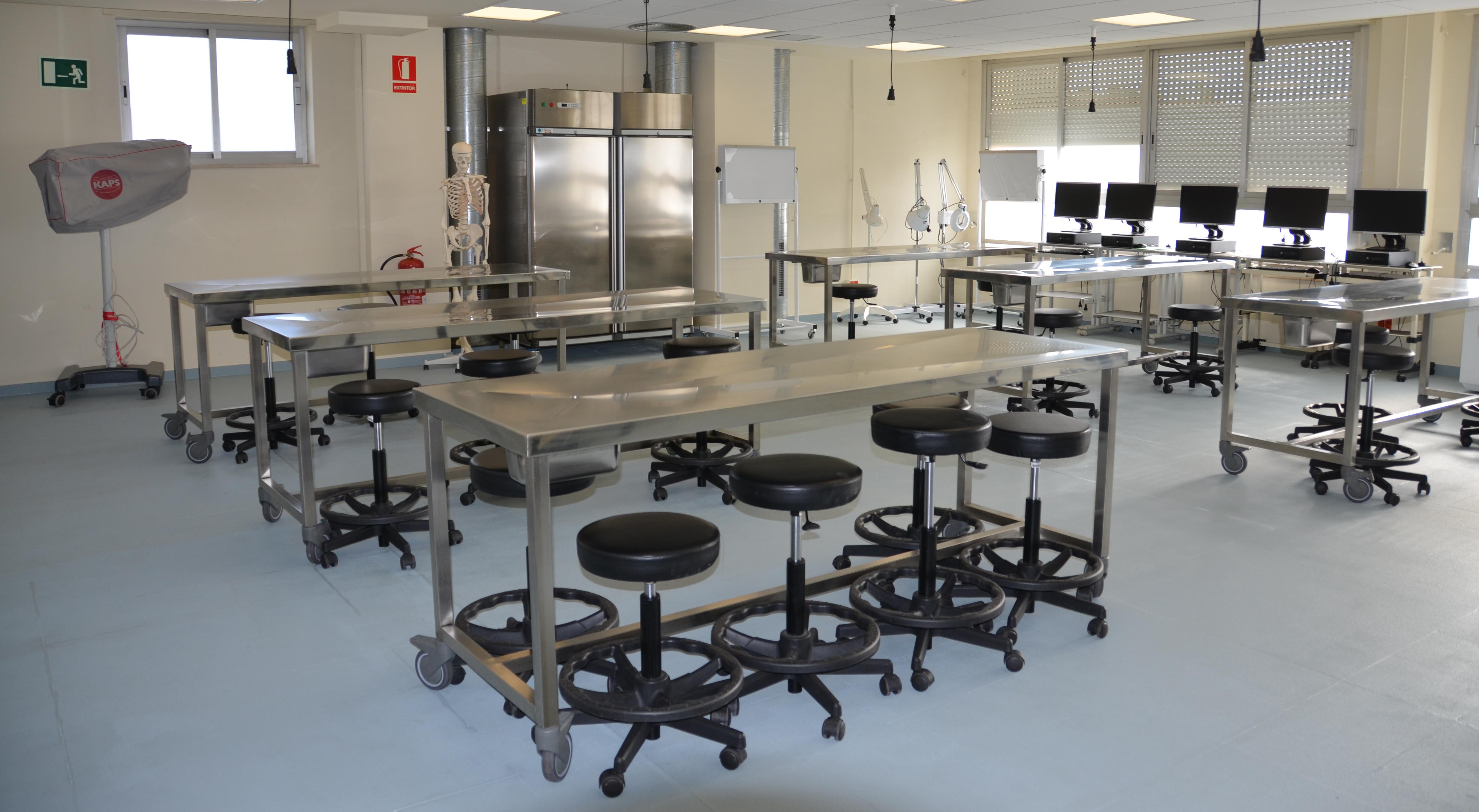 Finalitzat el curs d'anatomia funcional de l'aparell locomotor amb el taller de l'exploració de l'extremitat inferior